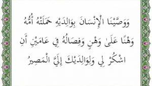 surat luqman ayat 14 terjemah